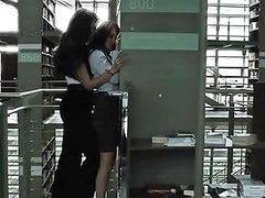 Fernanda Castillo And Dulce Maria Free Porn 10 Xhamster